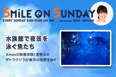 Xmasの映像体験!実物大のザトウクジラが東京の夜景を泳ぐ
