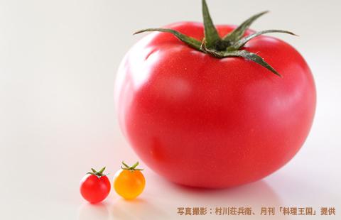 一流シェフを虜にする「ミニチュア野菜」の魅力