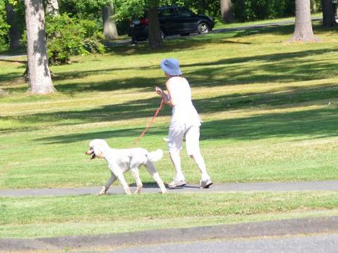 精神科医が明かす 五月病の対策は「朝の散歩」だった