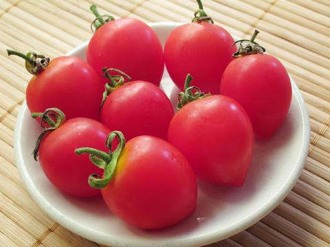トマトを科学するレストラン?「トーキョーヴァンパイア」