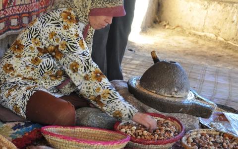 """モロッコの魔法の油""""アルガンオイル""""とは?"""