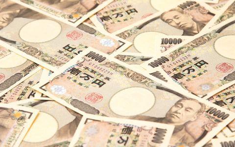 「ヒヨコ鑑定士」は月収64万! 気になる職業の給料