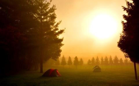 キャンプ経験が豊富な野村訓市 「怪談はご法度…」