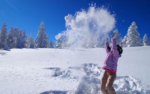 カナダ人に北海道のスキー場が人気の理由