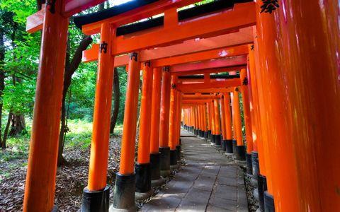 東京でベルギーを感じる場所は「根津神社」!?