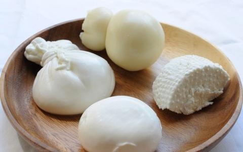 東京で食べられる「チーズ専門店」の金賞リコッタ