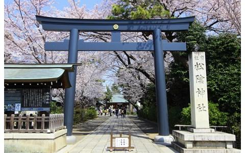 世田谷・松陰神社の周りは個性的な店がいっぱい