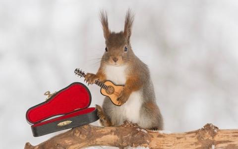 野村訓市、冬に合う音楽「メタルバラード」を熱く語る