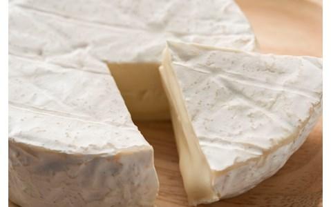 大人気チーズ専門店がお台場に!おすすめBEST3