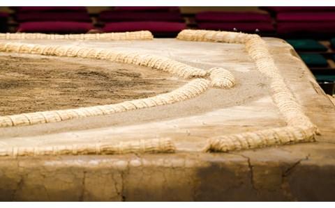 白鵬、稀勢の里… 期待高まる大相撲春場所