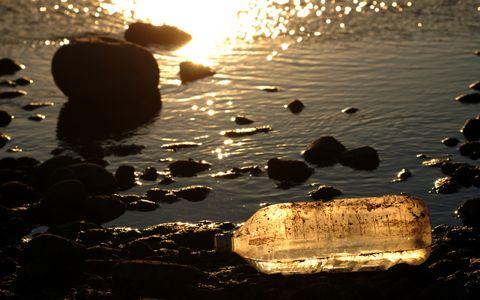 ペットボトル4万本のゴミ、荒川の「調べるゴミ拾い」