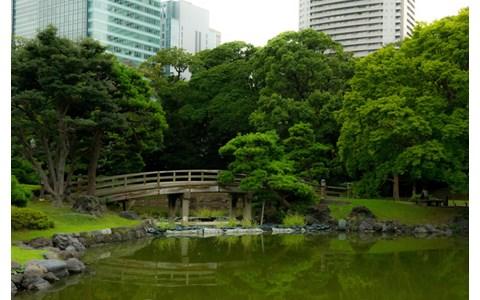 新緑の季節に行くべき「東京の森」は?
