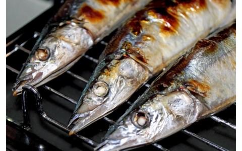魚の目利きもIT化? 水産業界のIT革命がアツい