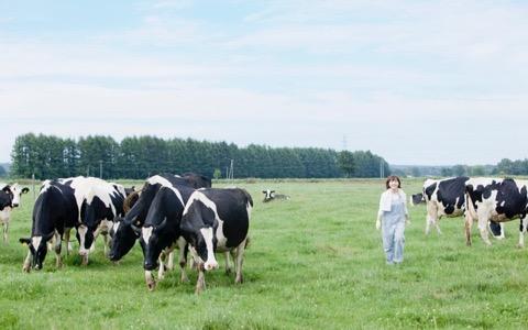 日本一和牛を食べたスペシャリストが選ぶ日本一の和牛