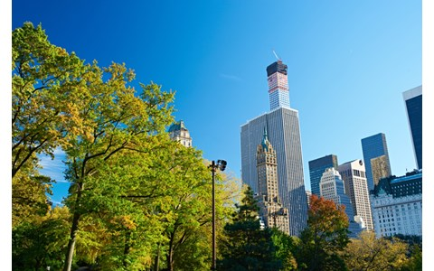 坂本龍一、ニューヨークでおこもり生活の理由