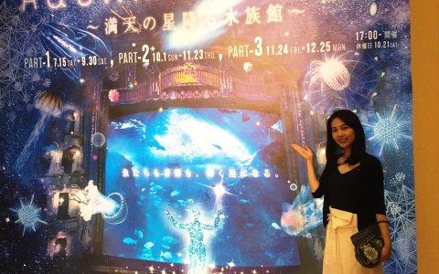 大人気企画!「えのすい」で楽しむ夜の水族館