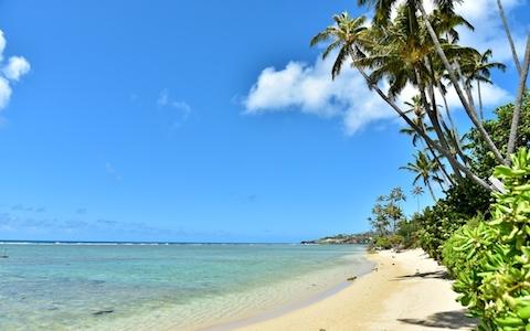 ハワイの達人が教える「おすすめスポット」は?
