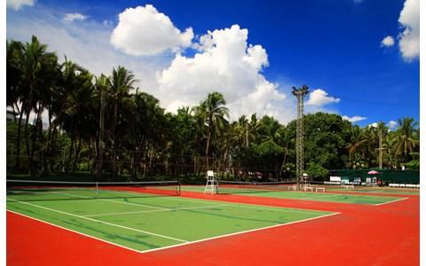 錦織不在の全米オープンテニス、注目の選手は?