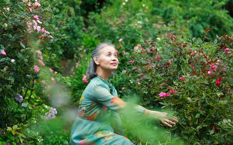 ポール・スミスも大ファンの日本人庭園デザイナー