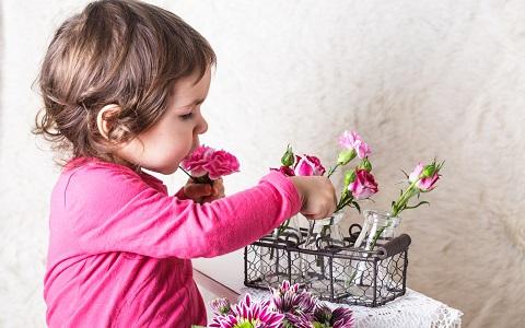 花と音楽の融合! 「花いけバトル」のここが面白い!