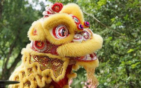 正月が年に何回も!? シンガポールで過ごす「アジアの新年」
