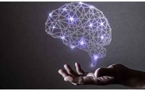 いじめが起こるのは「脳内物質」が関係していた…専門家語る