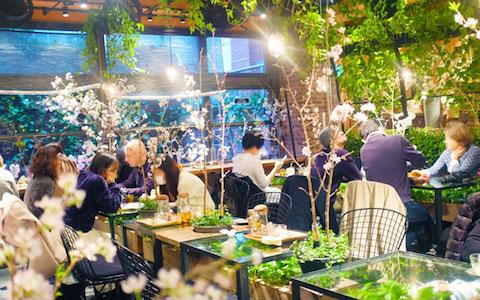 「お花に囲まれるカフェ」3選…カフェの達人が厳選!