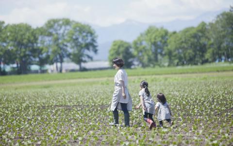 「体験農園」に注目…都会に住みながら自然に触れよう