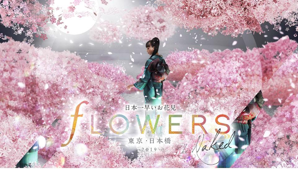 バーチャルな桜が舞い上がる! 最新テクノロジーで体感する、日本一早いお花見