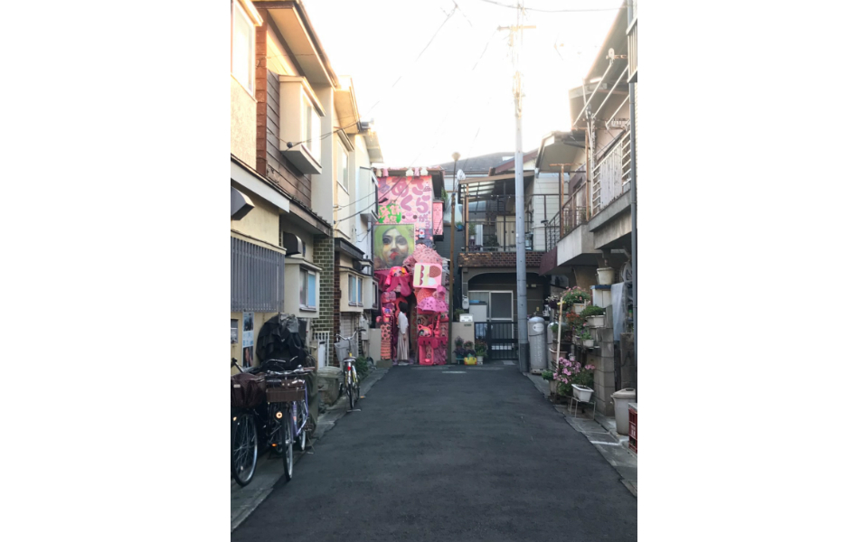 東京の珍スポット! 住宅地に「超ピンク」な家が出現…あれはなんだ!?