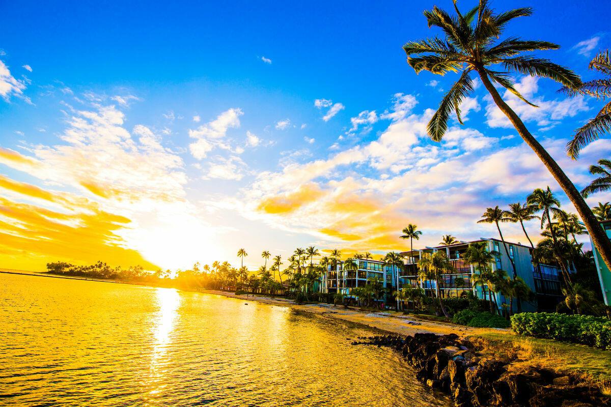 ハワイで人気のスーパーマーケットって? オーガニックな食材で料理をするのが通の楽しみ方!