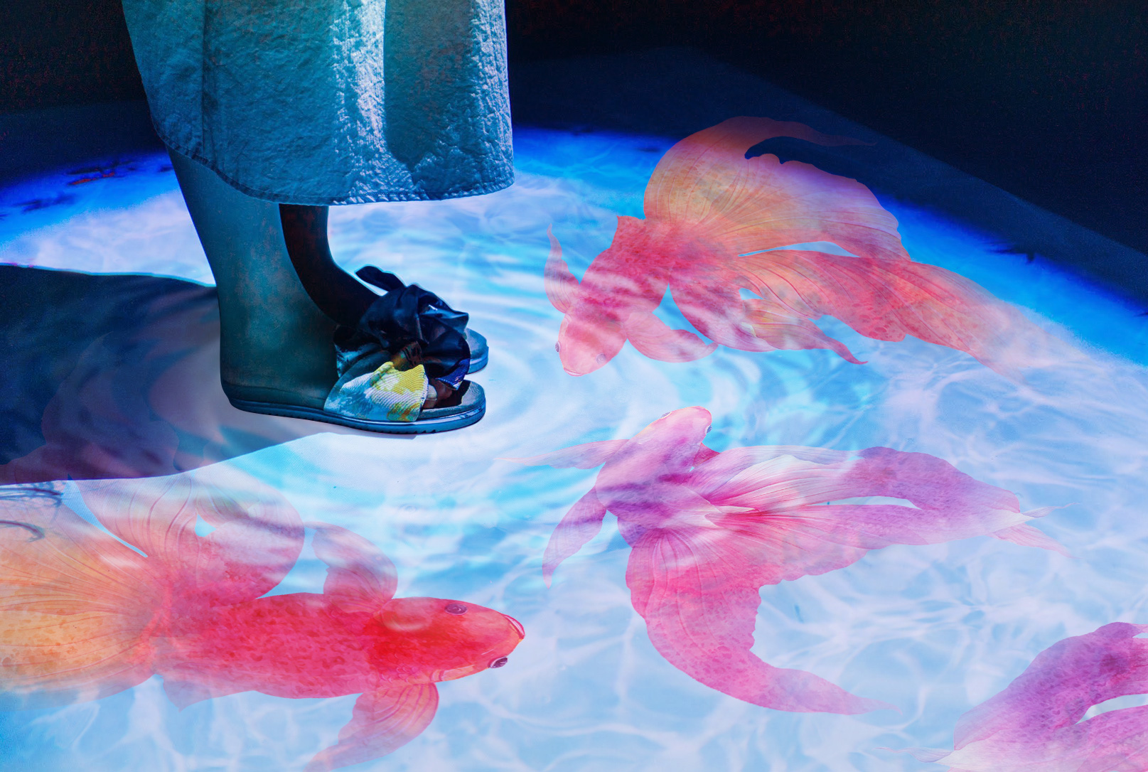 金魚のアートも楽しめる! 「東京金魚ワンダーランド2019」
