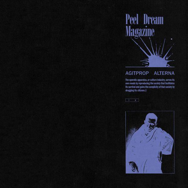 マイブラ直系のノイジーなギターと甘いヴォーカル…Peel Dream Magazineの一枚