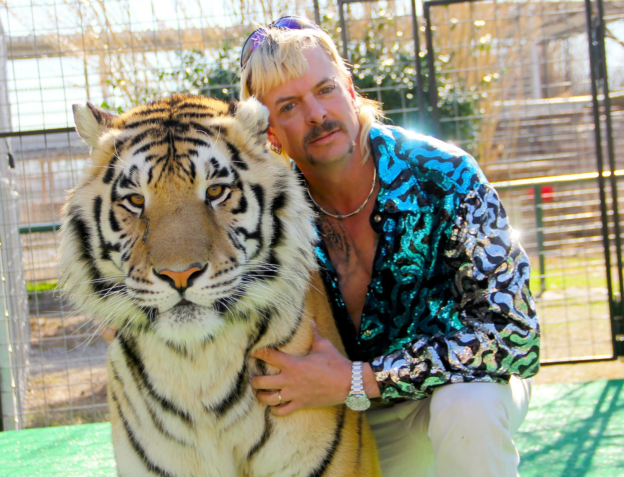 「動物好き=いい人」ではない! トラに賞味期限切れのエサを…劣悪男との仁義なき戦い【Netflixドキュメンタリー】