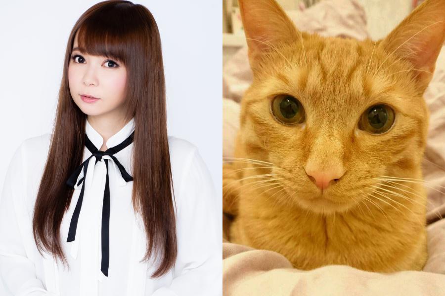 猫が持ってきてくれたのは…中川翔子が明かす、愛おしいエピソード
