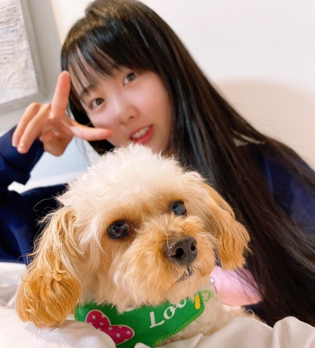 本田望結は愛犬が6匹! 家族で散歩に行くことも…最近おもしろかったことは?