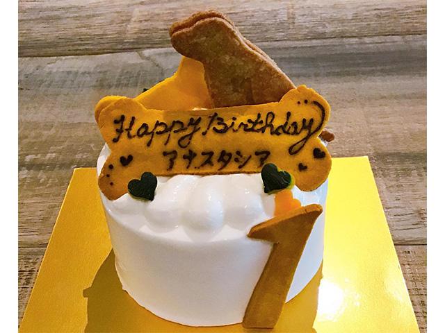 「スプラウトカフェ さくら坂」は犬が食べられるケーキも!