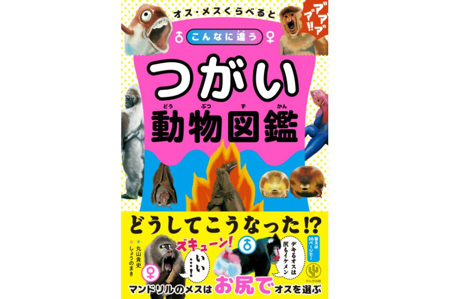 animal0929-1.jpg