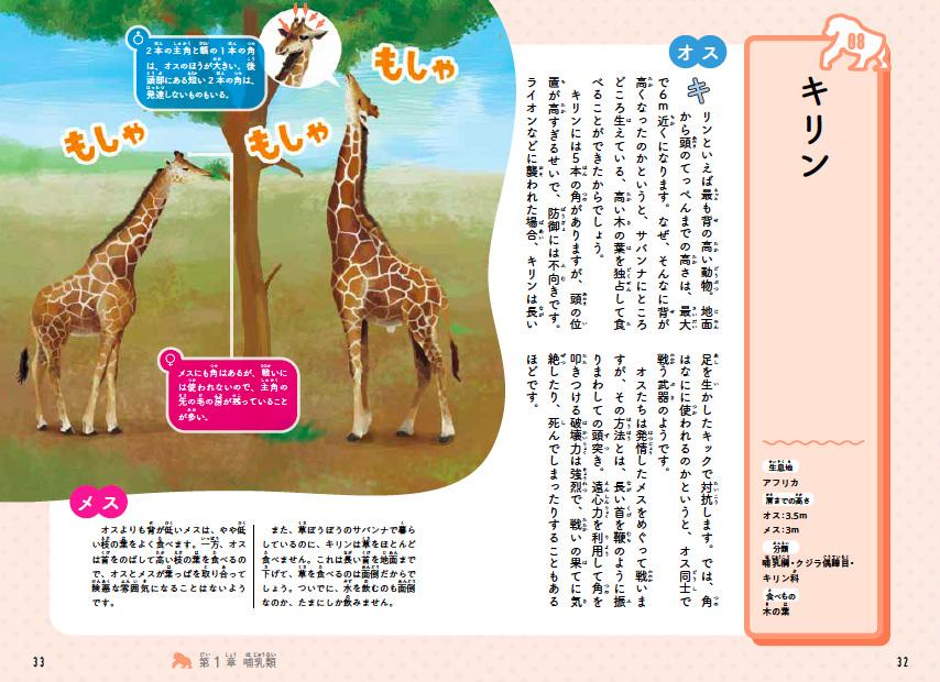 animal0929-3.jpg